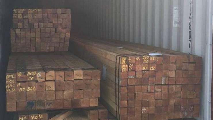 Toras de madeiras dentro de container