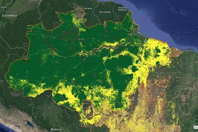 Site do Inpe com visualização do desmatamento acumulado (em amarelo) na Amazônia