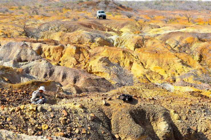 Paleontólogo venezuelano, Rodolfo Sanchez, coletando informações paleontológicas em campo