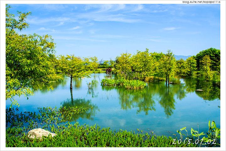 [花蓮吉安] 松湖驛站   落羽松湖畔旁的休息站, 美食美景一舉兩得!