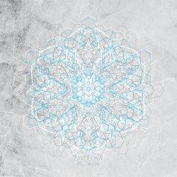 Zavoloka - Vedana artwork