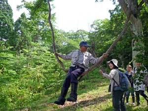 72歳の松木さんは今でも遊び心が旺盛(自然にできたブランコによじ登り楽しむ)