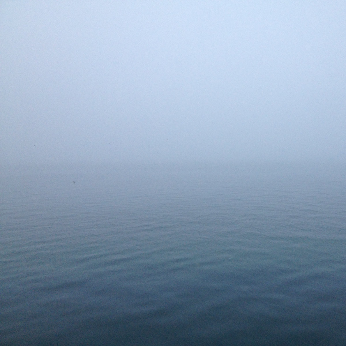"Tone 73 | Chris Watson ""Glastonbury Ocean Soundscape"""