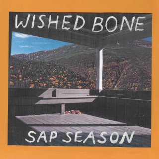 Image result for wished bone sap season