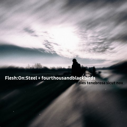Flesh:On:Steel + fourthousandblackbirds – dies tenebrosa sicut nox