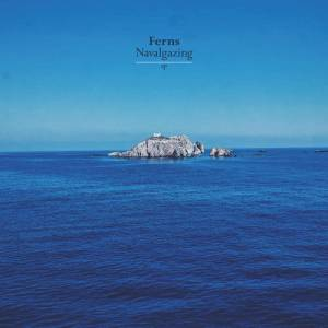 FERN – Navalgazing