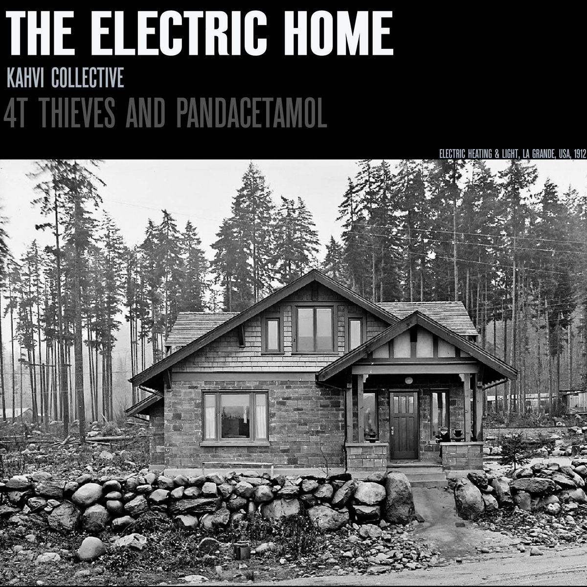 4T Thieves and Pandacetamol – The Electric Home