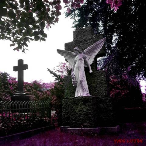 Yung Litten – intothegrave死の