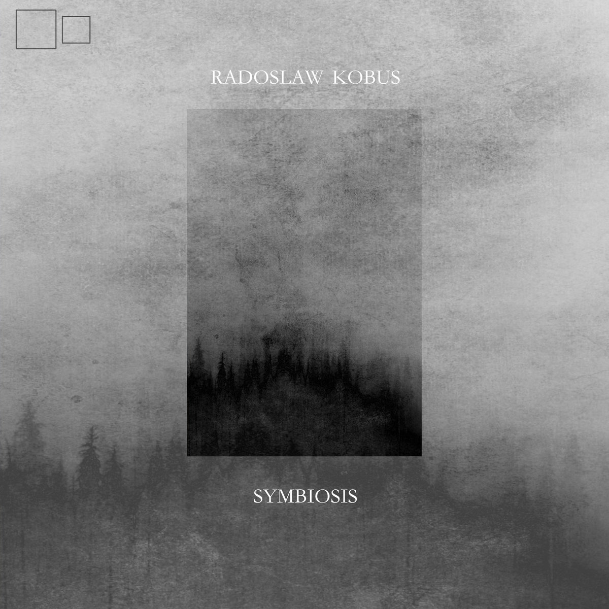 Radoslaw Kobus – Symbiosis
