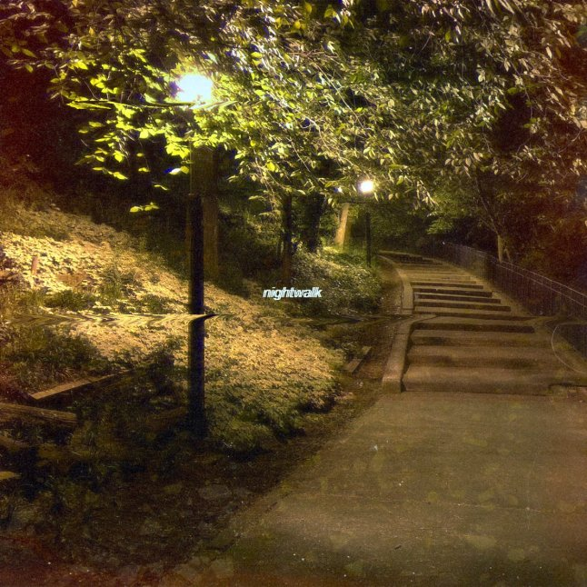 On a Nightwalk with Sounddesigner Peter Bark