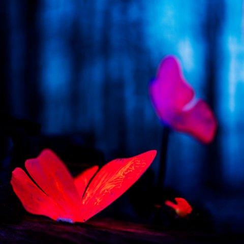 Lee Rosevere – Falling Slowly