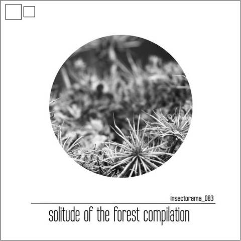 Various Artist – solitude of the forest compilatio