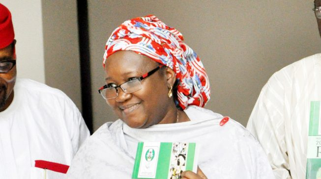 Image result for 61 political parties want Amina Zakari redeployed, reject INEC election guidelines