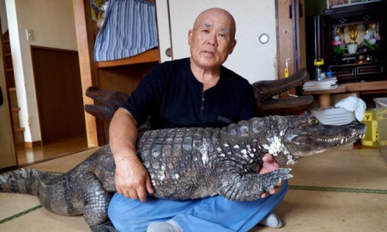 TeluguStop.com - The crocodile that has been in their house for 39 years .. because ..- General-Telugu-Telugu Tollywood Photo Image