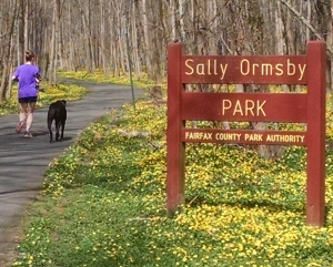 Screen Shot 2019 04 12 at 7.48.58 PM 300x241 - Freshening Up the Sally Ormsby Trail