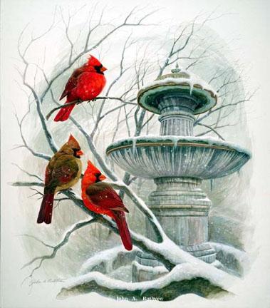 Bird Prints By John Ruthven Fabulous Frames Amp Art Blog