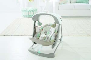 Deluxe Take Along Swing _ Seat