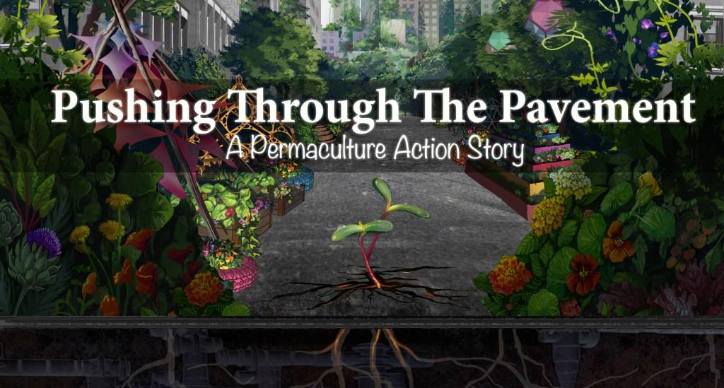 Permaculture Action Tour Film
