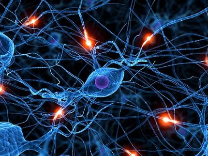 Neurona Dopaminérgica