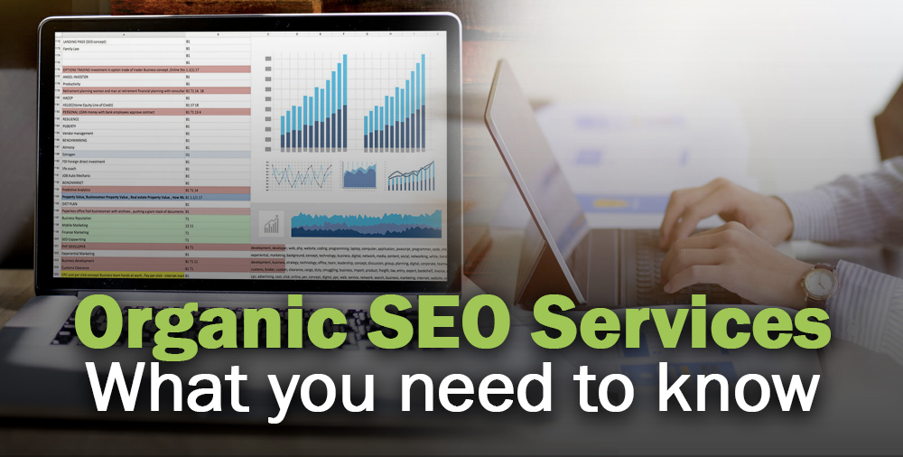 how can organic seo services help grow your business