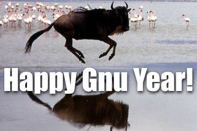 Image: http://dustincomics.com/2017/01/01/happy-gnu-year/