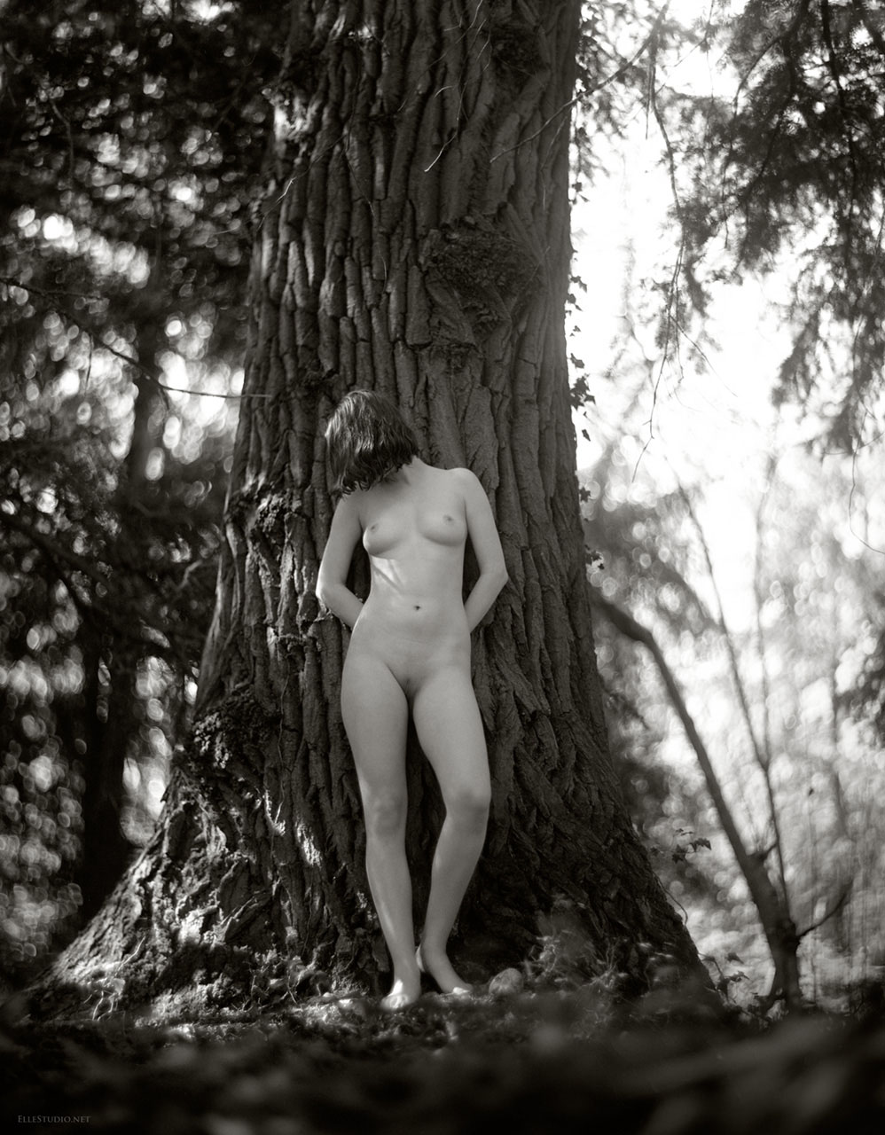Large format film photoghraphy, art nude by Fabien Queloz