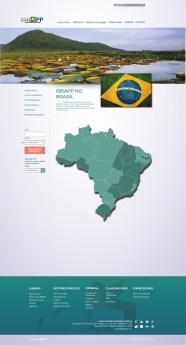 simulação - ibrapp no brasil