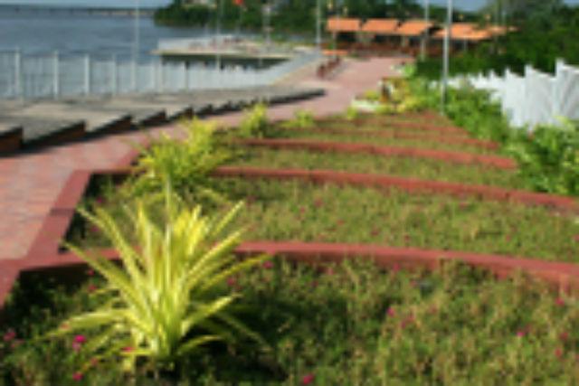 Jardins de Roraima Foto Tiago Orihuela