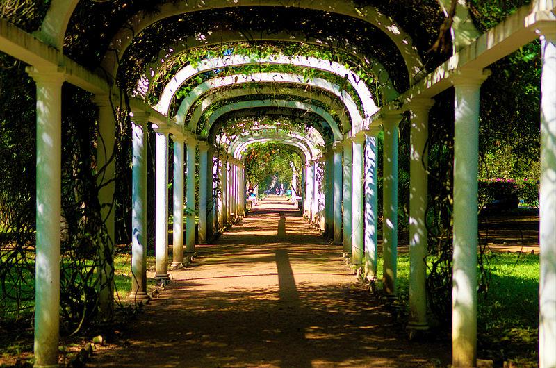 Jardim Botânico do Rio está com novidades