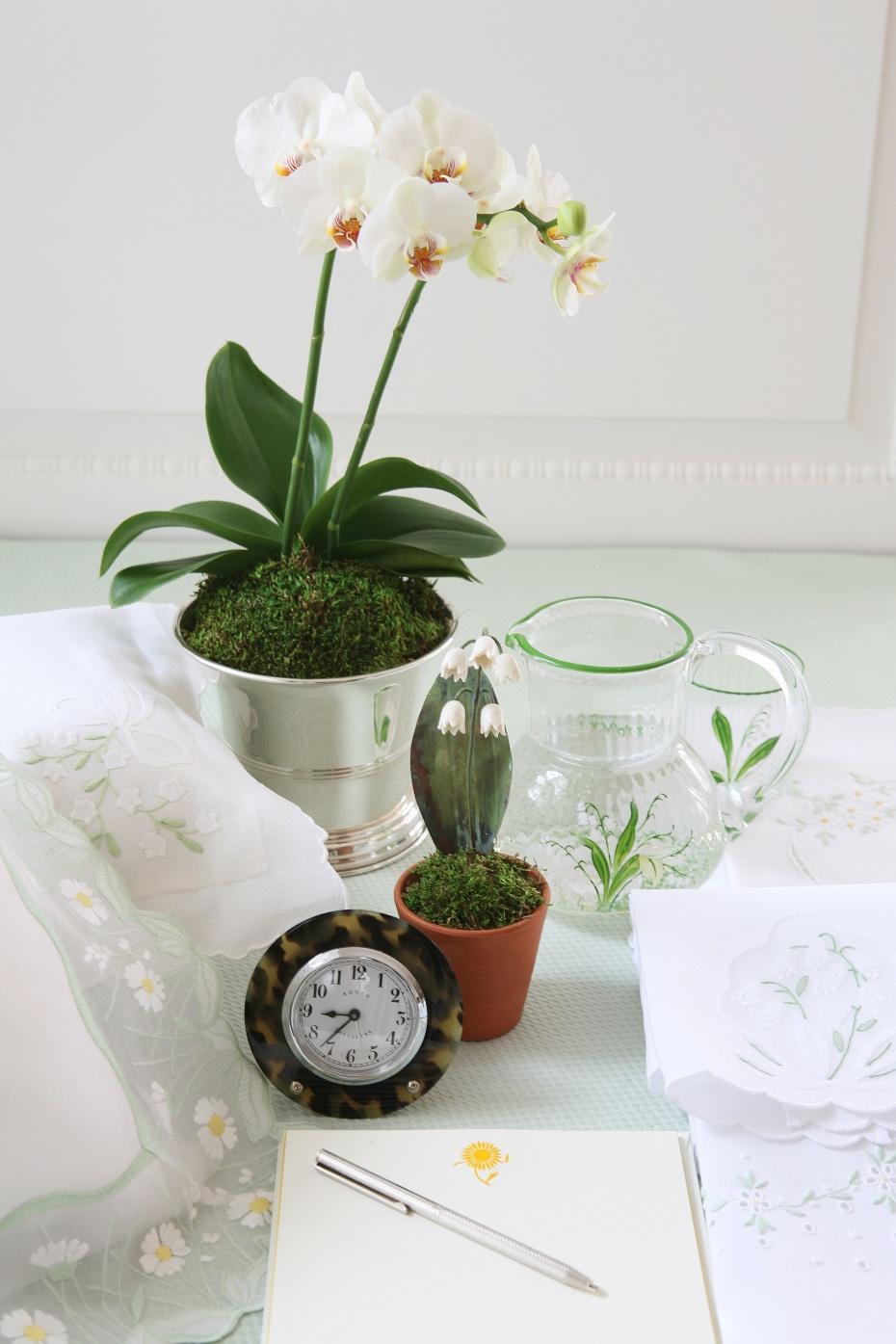 orchids5