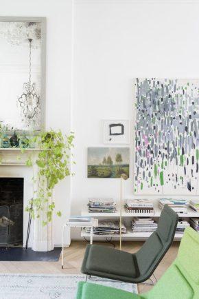 Lugar de plantas é dentro de casa 4