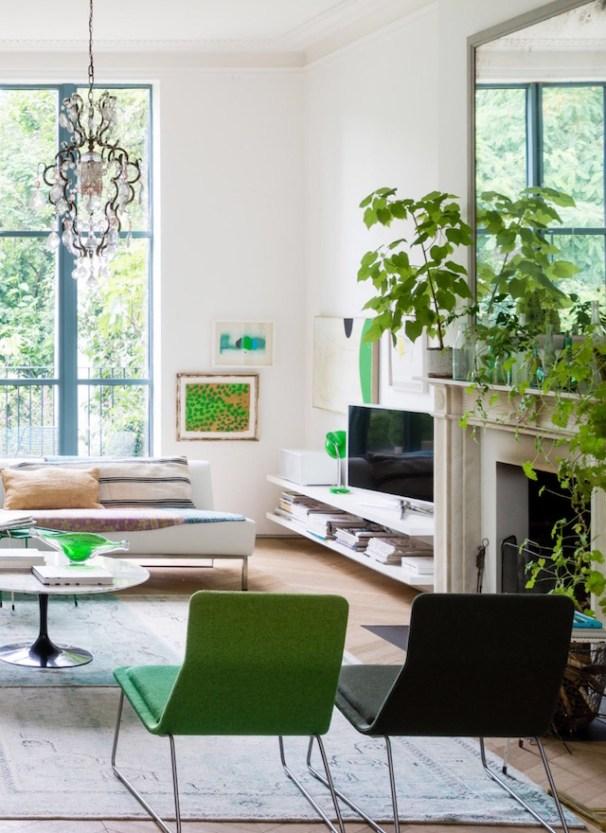 Lugar de plantas é dentro de casa 8