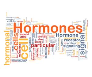 hormônios bioidênticos menopausa