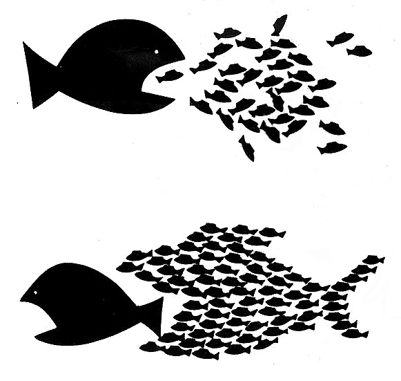 Little fish can defeat big fish