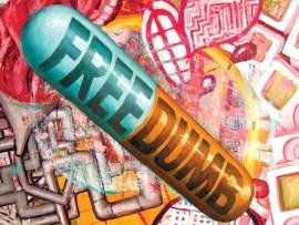 Jay Schmidt's Free-Dumb