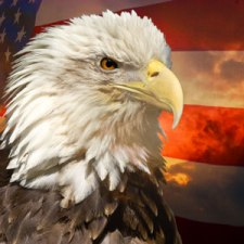 Eagle on the Flag