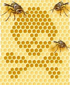 Bee Warning