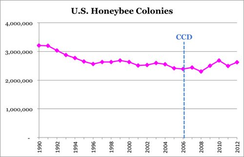 Quartz: honeybee colonies