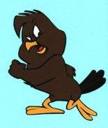 Henry the Chicken Hawk