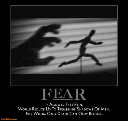 Fear: If allowed free reign...