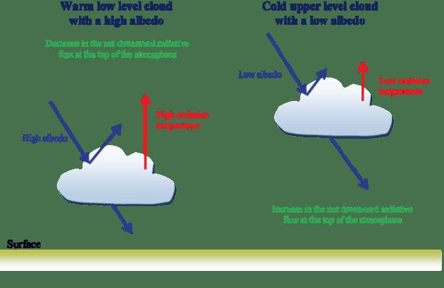 Cloud Feedback