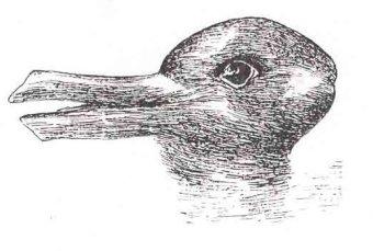 The Duck-Rabbit Illusion Paradigm shift