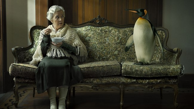 Women sitting next to penguin