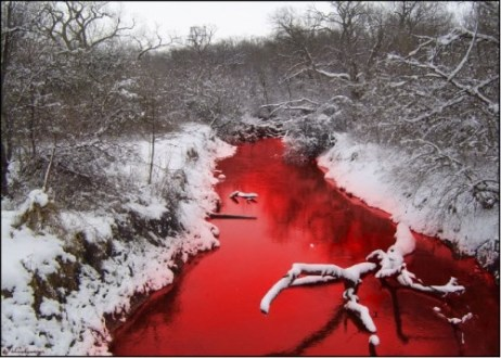 River of blood