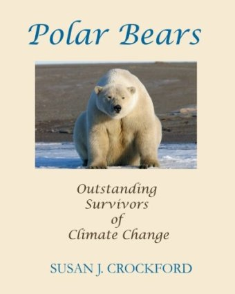 Polar Bears: Outstanding Survivors of Climate Change