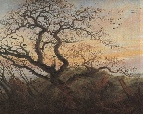 The tree of crows