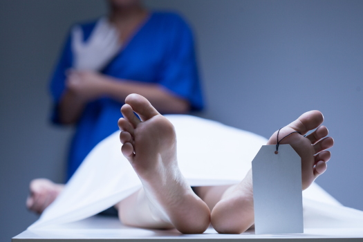 Feet of Corpse in a Morgue - Dreamstime - 45363117