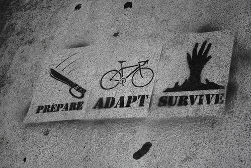Prepare - Adapt - Survive