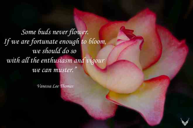 Flower quote low res