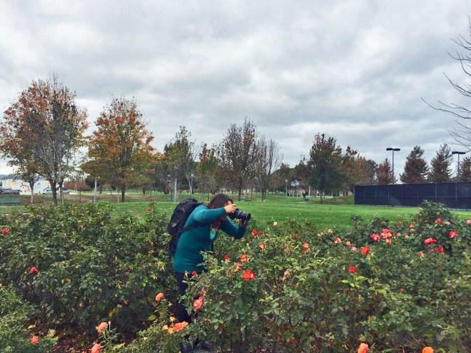 Me in the rose garden